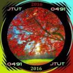 Phil Langham – Journey Through Uplifting Trance#491